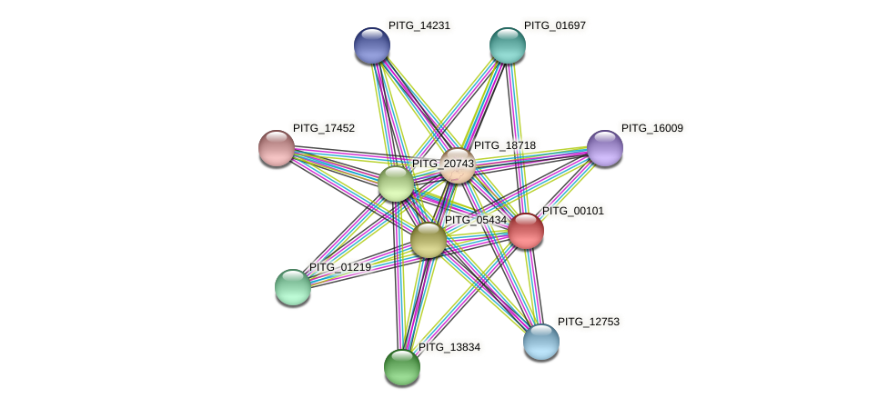 PITG_00101 protein (Phytophthora infestans) - STRING interaction network