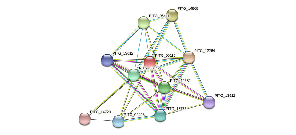 PITG_00110 protein (Phytophthora infestans) - STRING interaction network