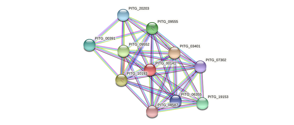 PITG_00141 protein (Phytophthora infestans) - STRING interaction network