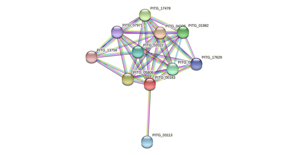 PITG_00183 protein (Phytophthora infestans) - STRING interaction network