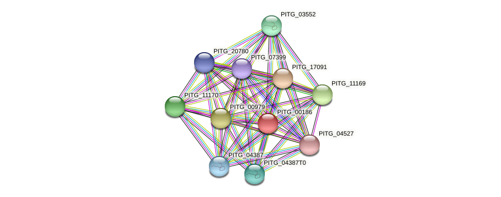 PITG_00186 protein (Phytophthora infestans) - STRING interaction network