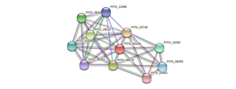 PITG_00194 protein (Phytophthora infestans) - STRING interaction network