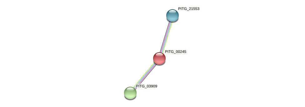 PITG_00245 protein (Phytophthora infestans) - STRING interaction network