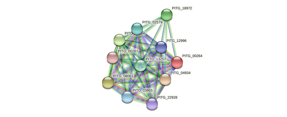 PITG_00264 protein (Phytophthora infestans) - STRING interaction network