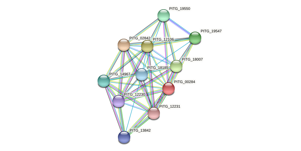 PITG_00284 protein (Phytophthora infestans) - STRING interaction network