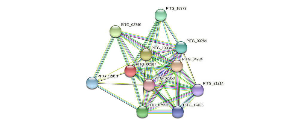 PITG_00287 protein (Phytophthora infestans) - STRING interaction network