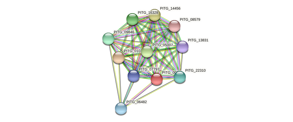 PITG_00302 protein (Phytophthora infestans) - STRING interaction network