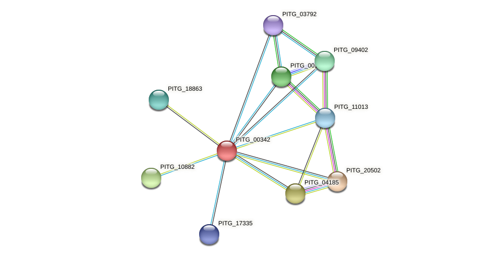 PITG_00342 protein (Phytophthora infestans) - STRING interaction network