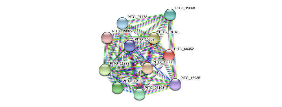 PITG_00352 protein (Phytophthora infestans) - STRING interaction network