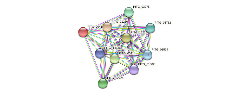 PITG_00415 protein (Phytophthora infestans) - STRING interaction network