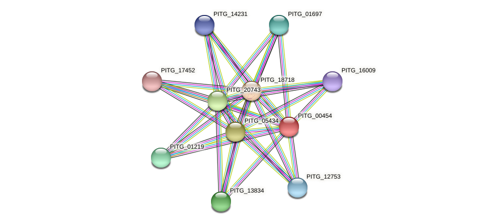 PITG_00454 protein (Phytophthora infestans) - STRING interaction network