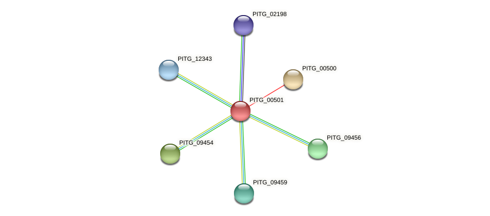 PITG_00501 protein (Phytophthora infestans) - STRING interaction network