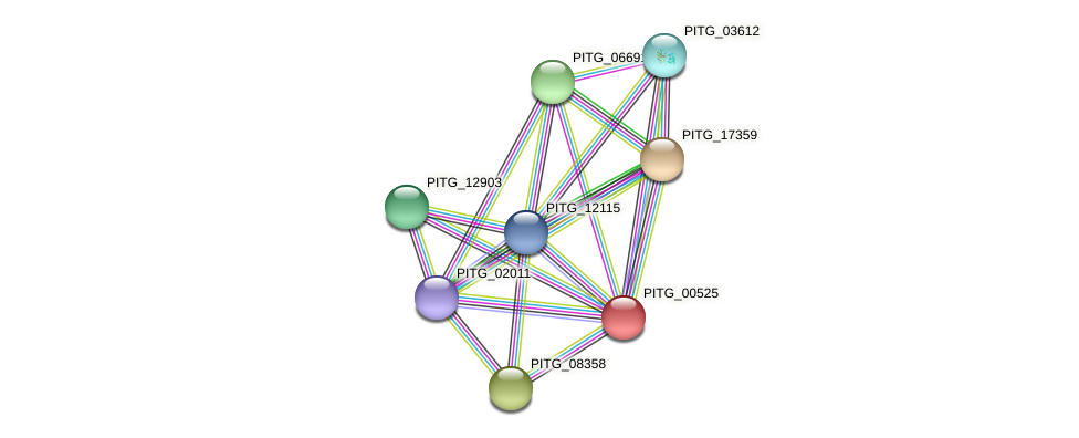 PITG_00525 protein (Phytophthora infestans) - STRING interaction network