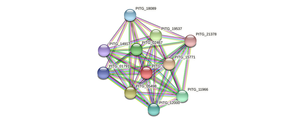 PITG_00527 protein (Phytophthora infestans) - STRING interaction network