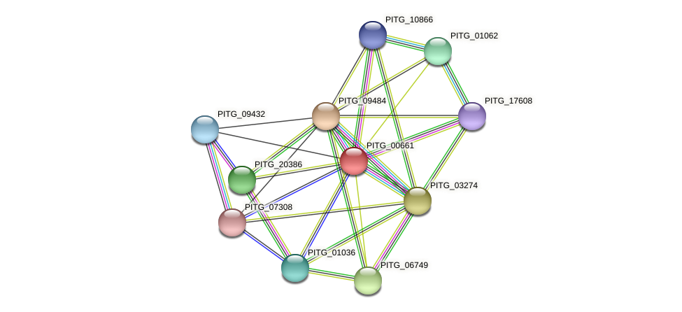 PITG_00661 protein (Phytophthora infestans) - STRING interaction network