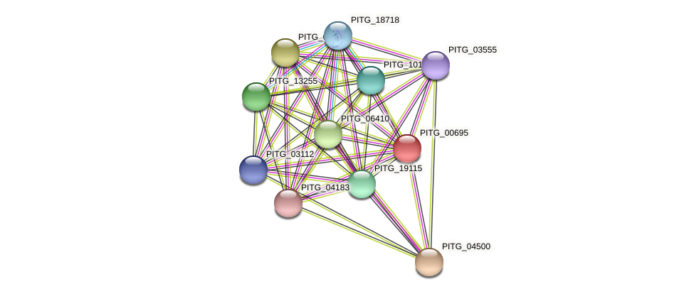 PITG_00695 protein (Phytophthora infestans) - STRING interaction network