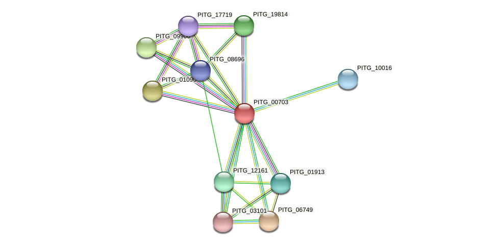 PITG_00703 protein (Phytophthora infestans) - STRING interaction network