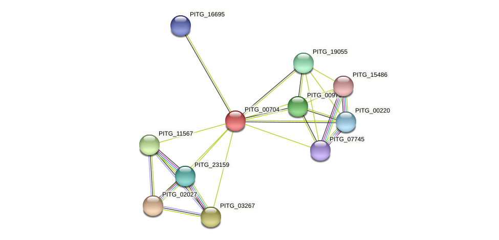 PITG_00704 protein (Phytophthora infestans) - STRING interaction network