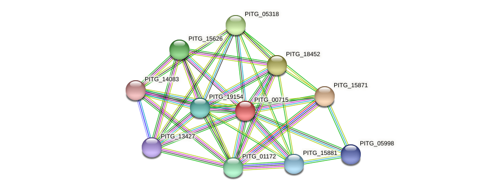 PITG_00716 protein (Phytophthora infestans) - STRING interaction network