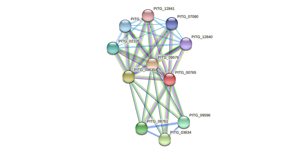 PITG_00765 protein (Phytophthora infestans) - STRING interaction network
