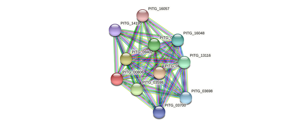 PITG_00806 protein (Phytophthora infestans) - STRING interaction network