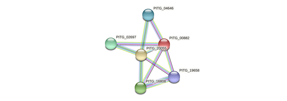 PITG_00882 protein (Phytophthora infestans) - STRING interaction network