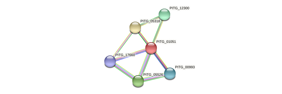 PITG_01051 protein (Phytophthora infestans) - STRING interaction network