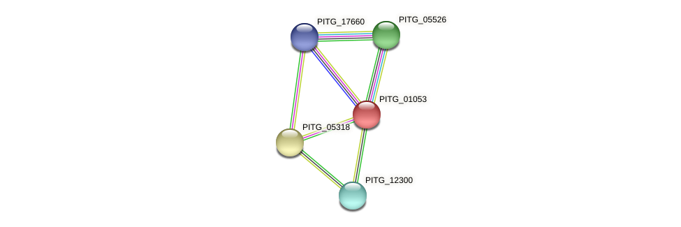 PITG_01053 protein (Phytophthora infestans) - STRING interaction network
