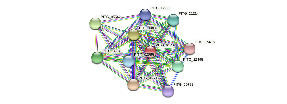 PITG_01208 protein (Phytophthora infestans) - STRING interaction network