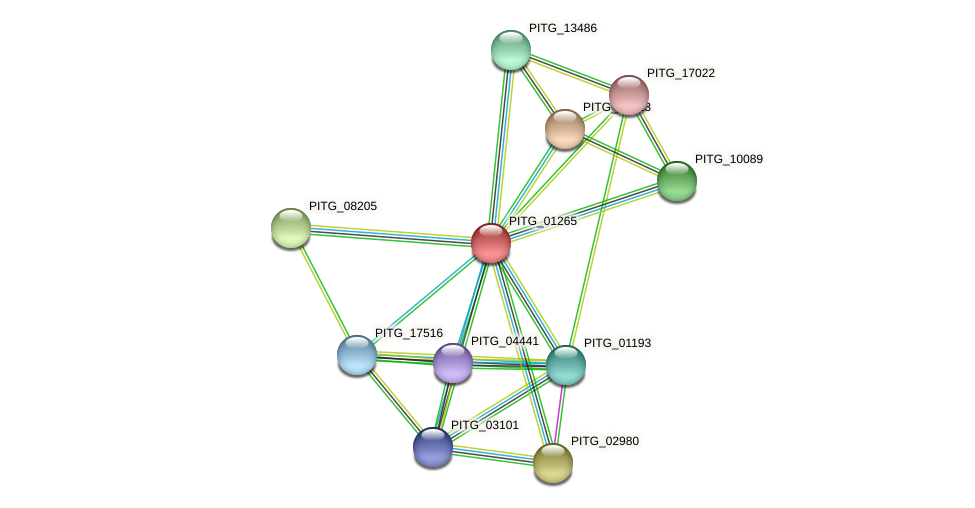 PITG_01265 protein (Phytophthora infestans) - STRING interaction network