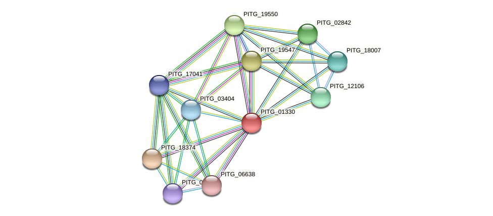 PITG_01330 protein (Phytophthora infestans) - STRING interaction network