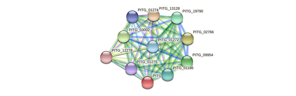 PITG_01423 protein (Phytophthora infestans) - STRING interaction network