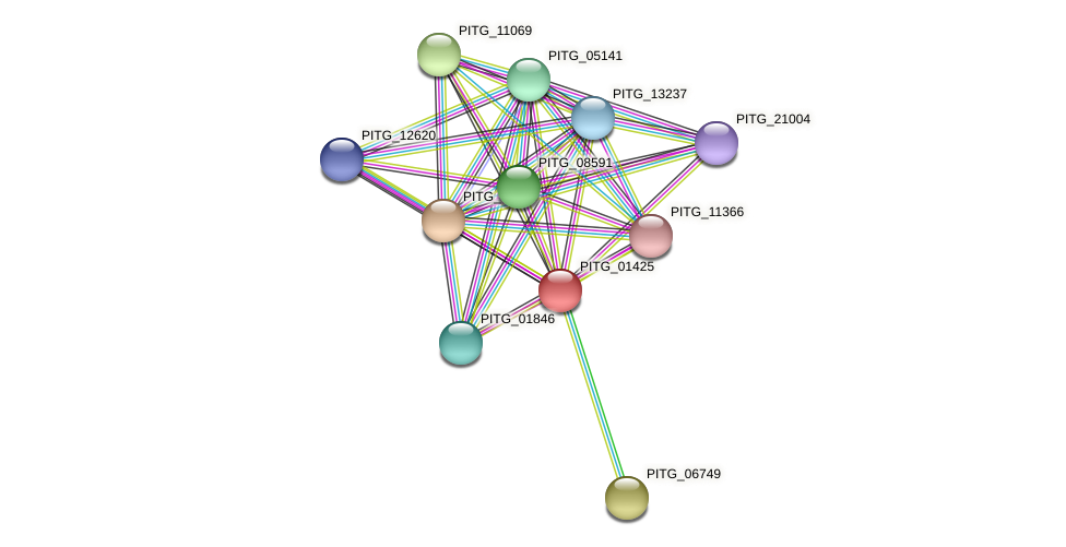 PITG_01425 protein (Phytophthora infestans) - STRING interaction network