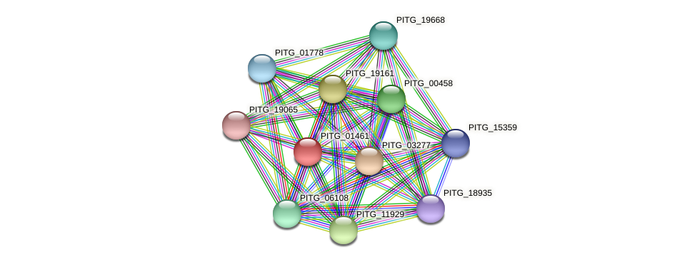 PITG_01461 protein (Phytophthora infestans) - STRING interaction network