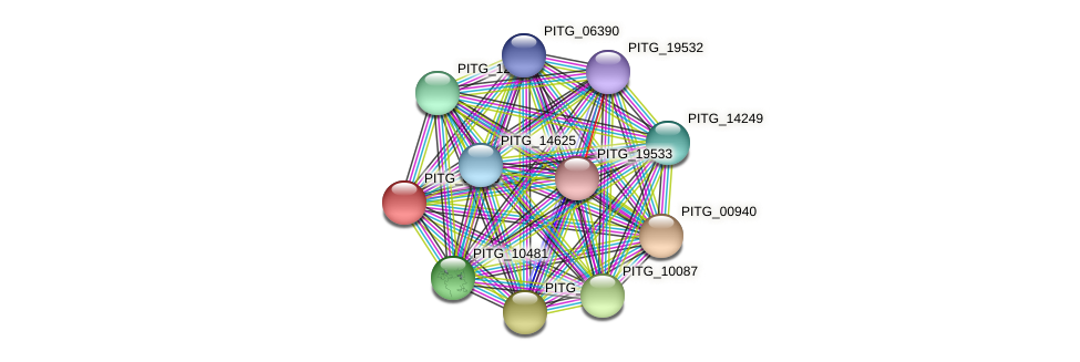 PITG_01606 protein (Phytophthora infestans) - STRING interaction network