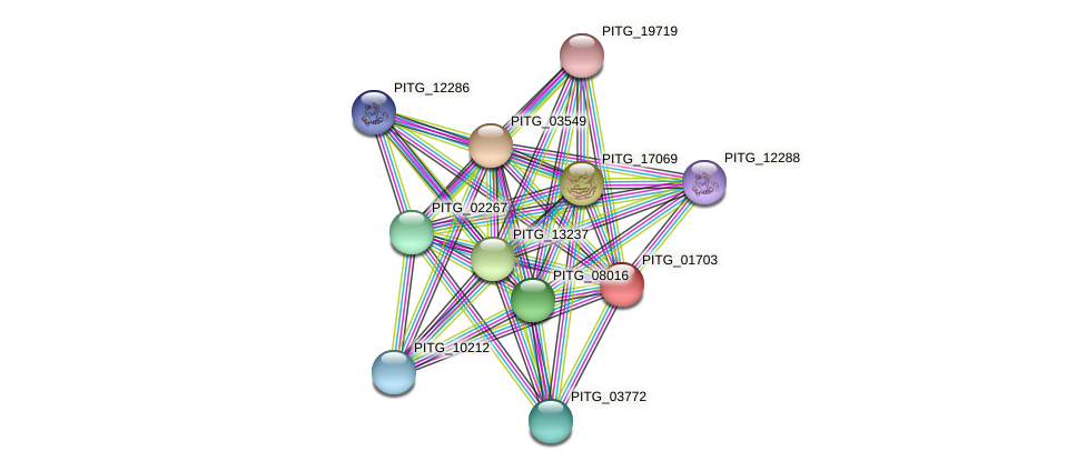 PITG_01703 protein (Phytophthora infestans) - STRING interaction network