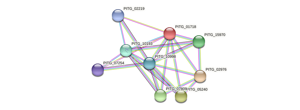 PITG_01718 protein (Phytophthora infestans) - STRING interaction network