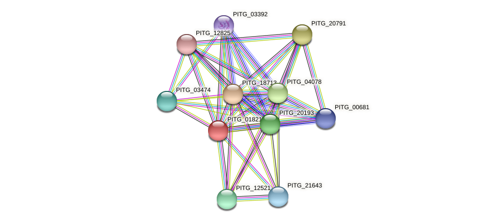 PITG_01821 protein (Phytophthora infestans) - STRING interaction network