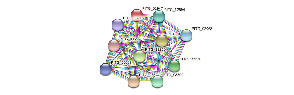PITG_01947 protein (Phytophthora infestans) - STRING interaction network