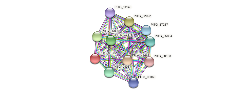 PITG_01982 protein (Phytophthora infestans) - STRING interaction network