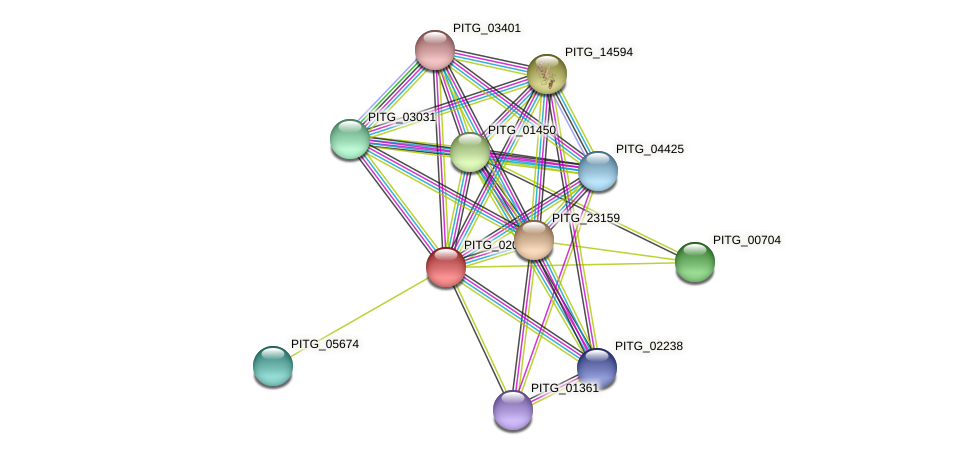 PITG_02027 protein (Phytophthora infestans) - STRING interaction network