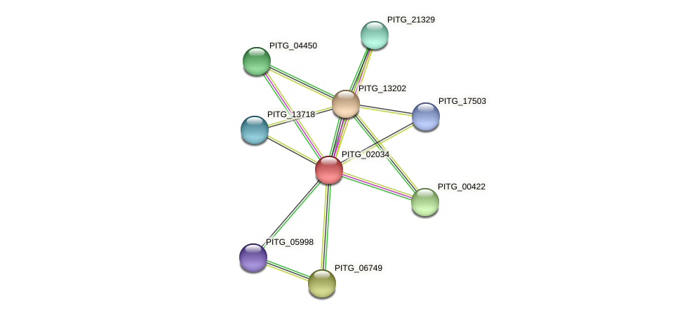 PITG_02034 protein (Phytophthora infestans) - STRING interaction network