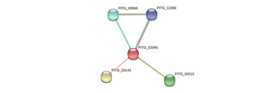 PITG_02040 protein (Phytophthora infestans) - STRING interaction network