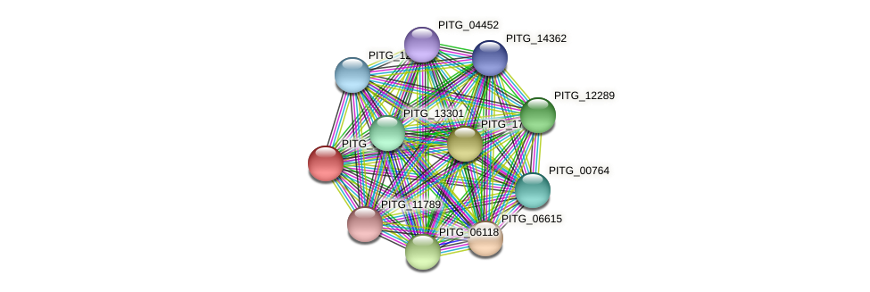 PITG_02045 protein (Phytophthora infestans) - STRING interaction network