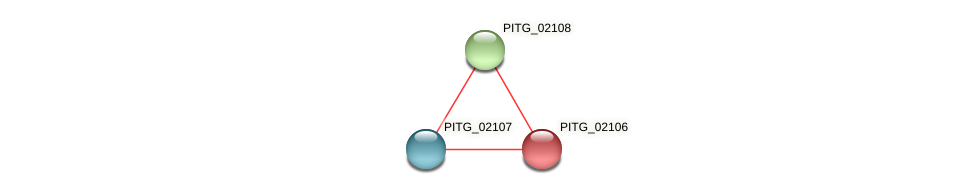 PITG_02106 protein (Phytophthora infestans) - STRING interaction network