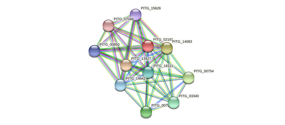 PITG_02192 protein (Phytophthora infestans) - STRING interaction network