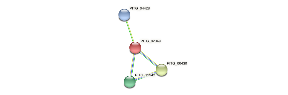 PITG_02349 protein (Phytophthora infestans) - STRING interaction network