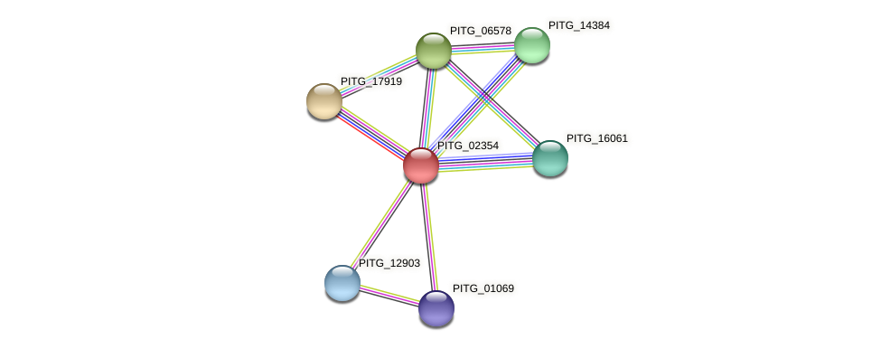 PITG_02354 protein (Phytophthora infestans) - STRING interaction network