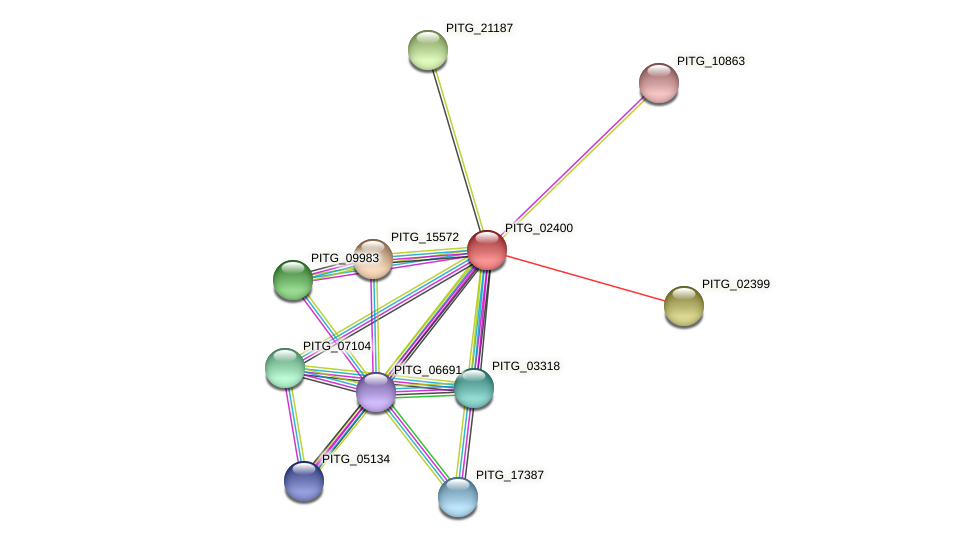 PITG_02400 protein (Phytophthora infestans) - STRING interaction network