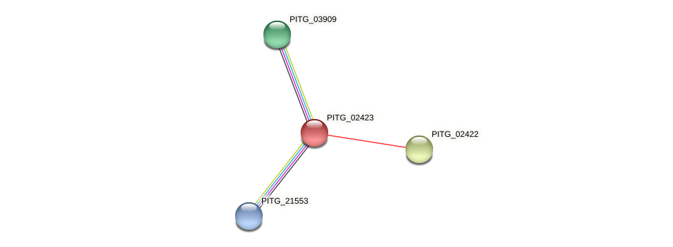 PITG_02423 protein (Phytophthora infestans) - STRING interaction network